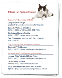toledo-pet-support-guide